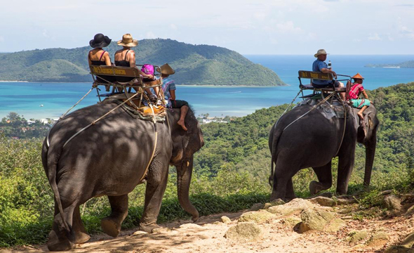 Siam Safari Nature Tours, Phuket, Thailand