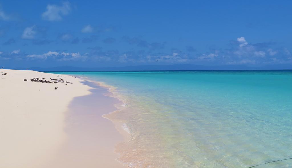 Michaelmas Cay Island